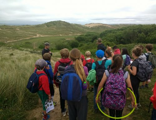 Class 4: Coasts and Conservation…