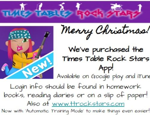 Times Tables Rock Stars … Christmas present!