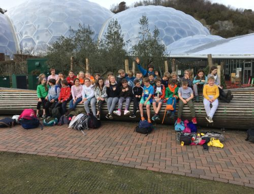 Class 4 at the Eden Project