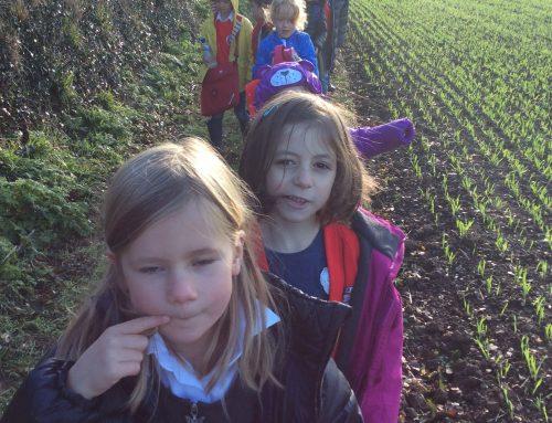 Class 1 and 2 Pickwell Farm Trip