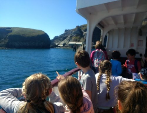 Year 5 being adventurous on Lundy..