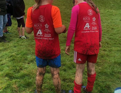 Cross Country – this Sunday – Coxleigh Barton, nr. Shirwell