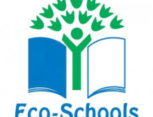 Eco Council / Cimate Council minutes…