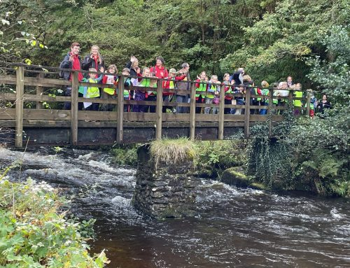 Class 3's journey down the River Lyn
